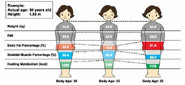 metabolische leeftijd